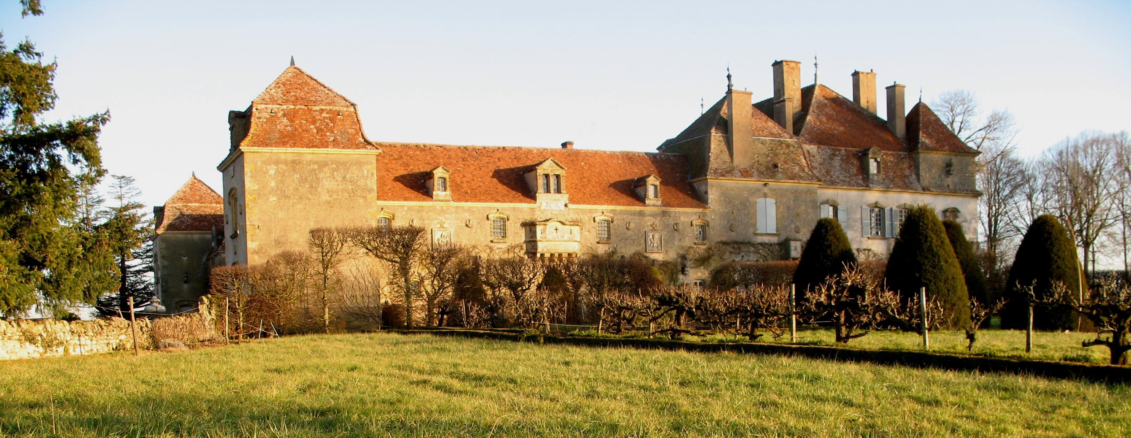 Château_de_Chaumont_(71)_-_1